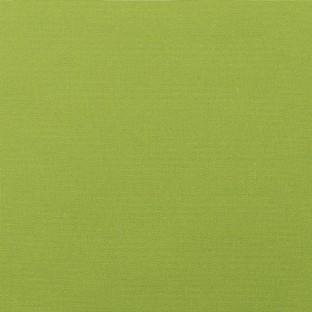 Sunbrella Canvas Macaw #5429-0000 Indoor / Outdoor Upholstery Fabric