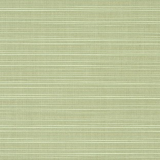 Sunbrella Dupione Aloe #8068-0000 Indoor / Outdoor Upholstery Fabric